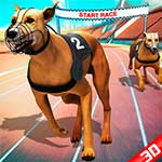 Crazy Dog Racing 2020